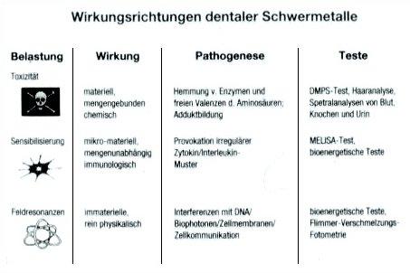 Wirkungsrichtungen dentaler Schwermetalle